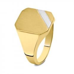 Bicolor gouden zegelring met as 3040B}
