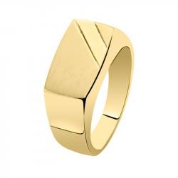 Gouden asring 3000G}
