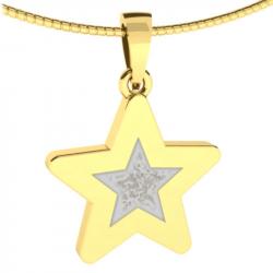 gouden gedenkhanger ster met as of haar 9122G}