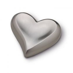 Zilverkleur hart mini urn HUH027}